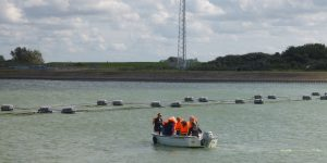 Bootje tijdens zeewierexcursie