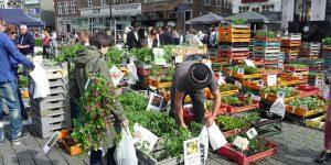 Geraniummarkt in 's-Hertogenbosch
