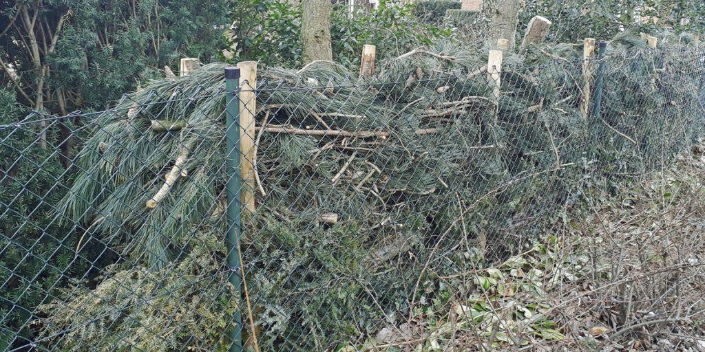 Takkenril van pijnbomenhout