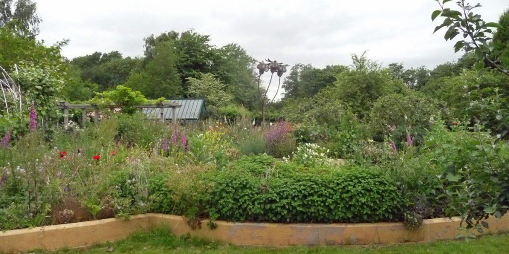 A view on Ryton Organic Gardens