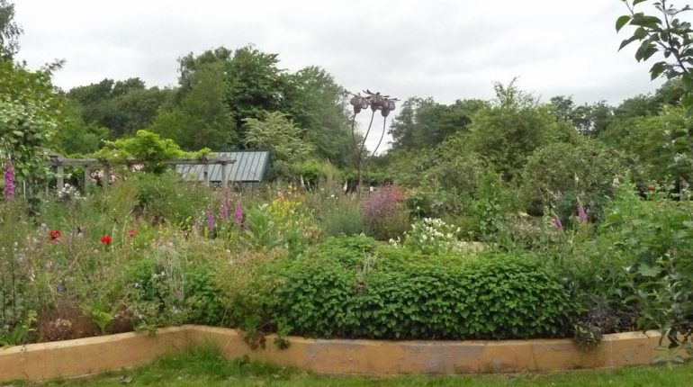 A view on Ryton Organic Gardens