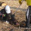 190218 Tiny forest plantdag (37) Twee kinderen planten boompje