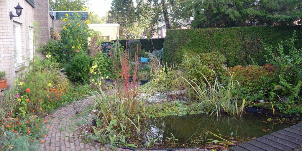 Attracting garden birds Pond in Wawonatuin