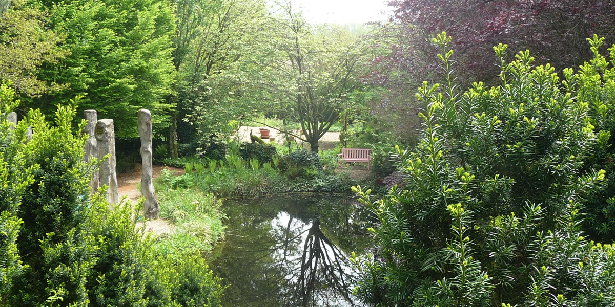 wetlands in gardens