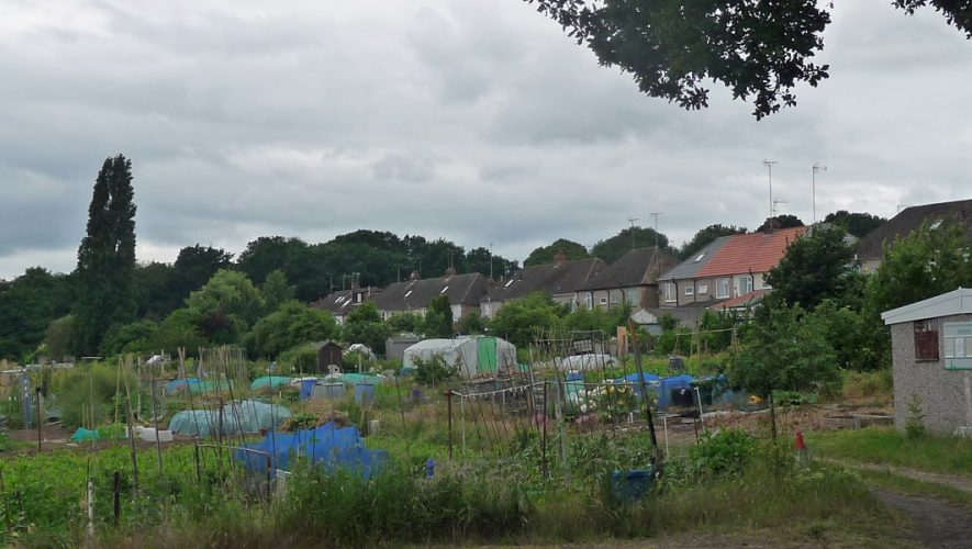 Coventry allotment site