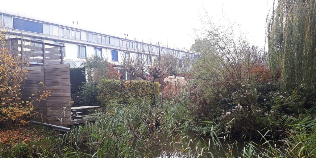 Ons-Buiten-garden-park-next-to-houses