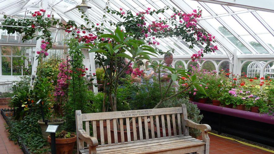 botanische tuinen Birmingham bank in mediterrane kas