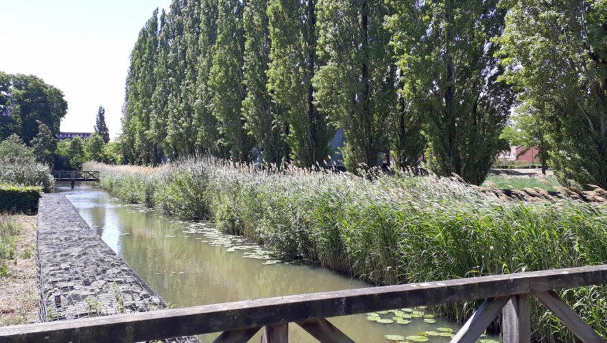 Westerpark in 's-Hertogenbosch