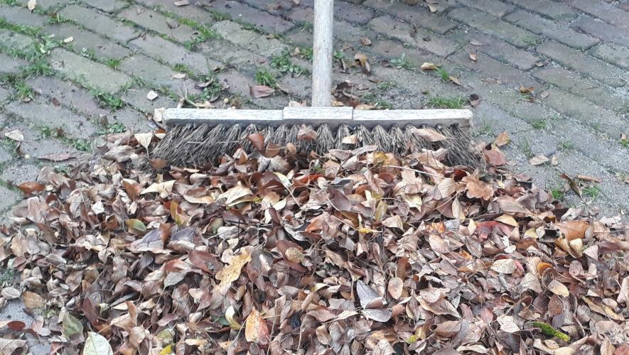 Bladeren vegen